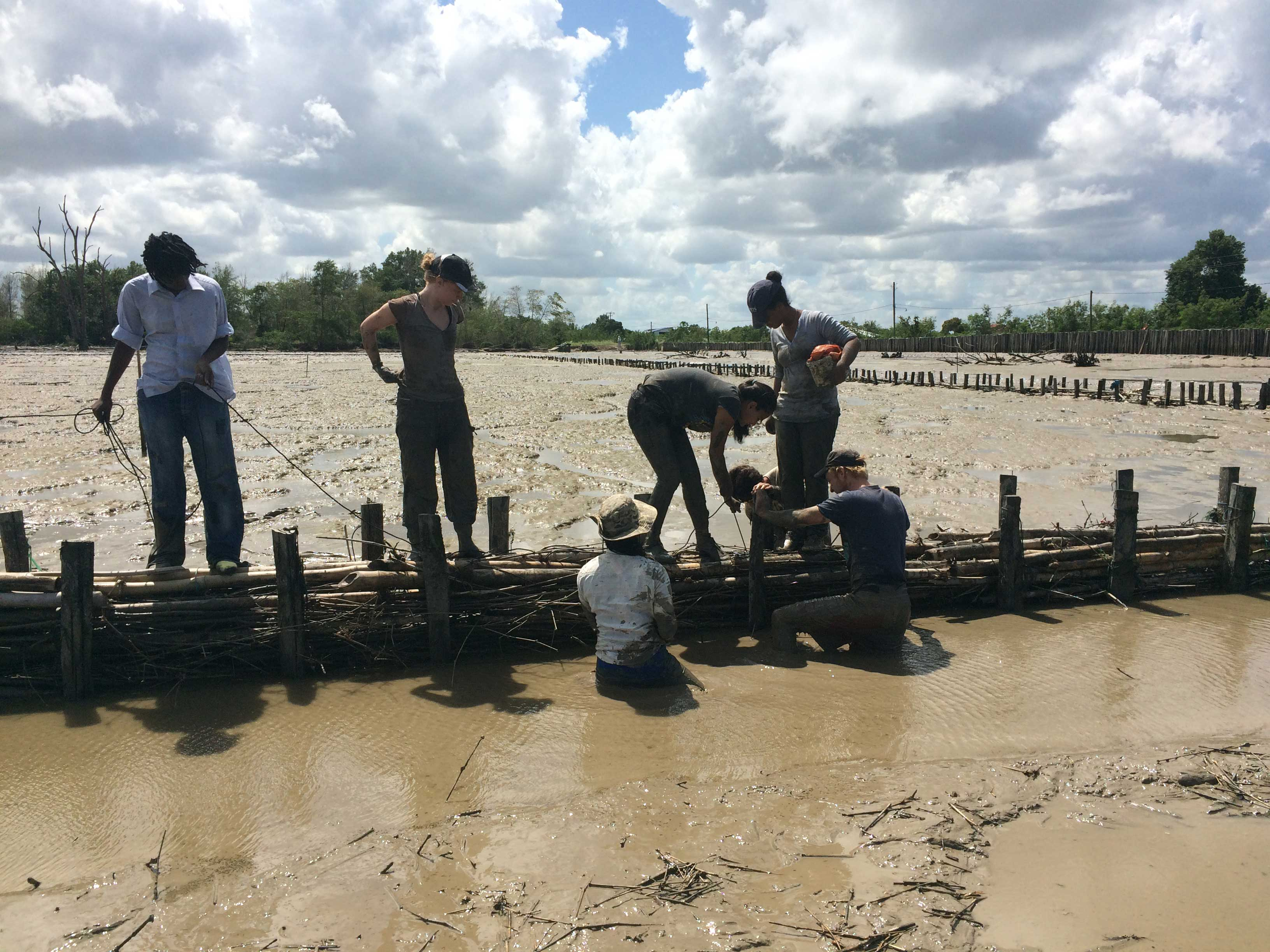 Construction of low cost structure to facilitate deposition of sediments from coastal waters.